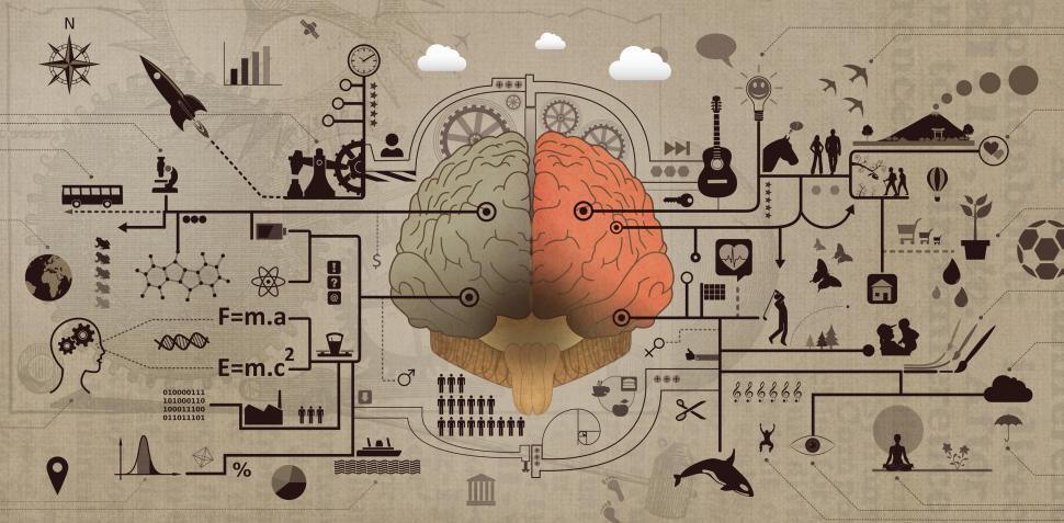 Creativity-and-the-brain.jpg